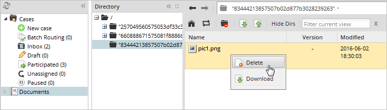 3 0 - 3 1 - Input Documents | Documentation@ProcessMaker